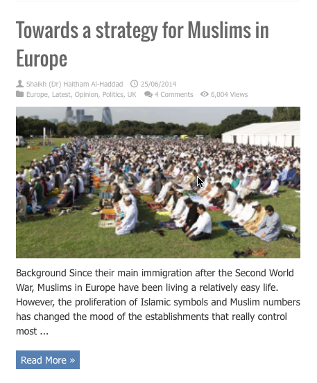 towards a strategy for muslims in europe